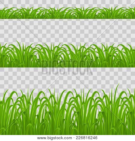 Set Of Green Grass Elements On Transparent Background For Design
