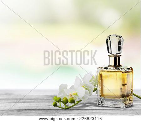 Flowers Bottle Perfume Studio Shot White Object Nobody