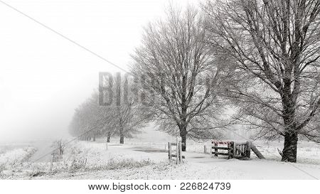 Snowstorm In A Dutch Winter Landscape Withe A Cattle Guard