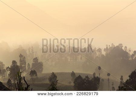 Sunrise In Cemoro Lawang Near Mount Bromo, Indonesia