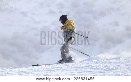 People Skiing In The Winter . In The Park In Nature