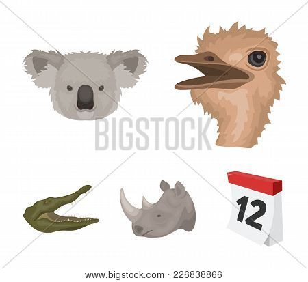Ostrich, Koala, Rhinoceros, Crocodile, Realistic Animals Set Collection Icons In Cartoon Style Vecto