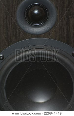Close Up Of A Bookshelf Speaker With The Grill Off The Front To Show The Speakers Be Hide.