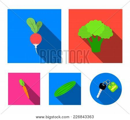 Broccoli Cabbage, Radish, Green Cucumber, Carrots With Tops. Vegetables Set Collection Icons In Flat