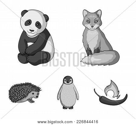 Fox, Panda, Hedgehog, Penguin And Other Animals.animals Set Collection Icons In Monochrome Style Vec