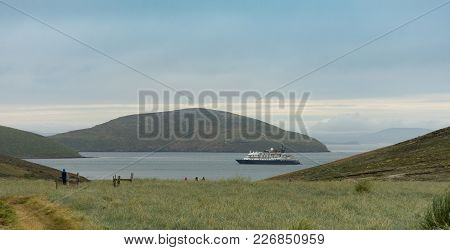 A Small Cruise Ship Anchored Off One Of The Faukland Islands With Tall Lush Grass In The Foreground.