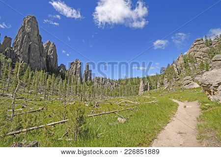 Quiet Trail Through A Mountain Valley In The Needles And Cathedral Spires Section Of The Black Hills