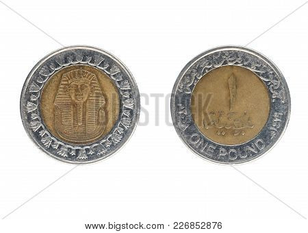 One Egyptian Pound Coin. Isolate On White Background