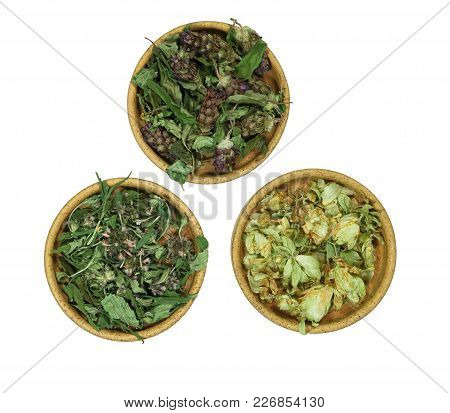 Prunella, Sage, Salvia, Wild Hop. Dry Herbs For Use In Alternative Medicine, Phytotherapy, Herbal Co