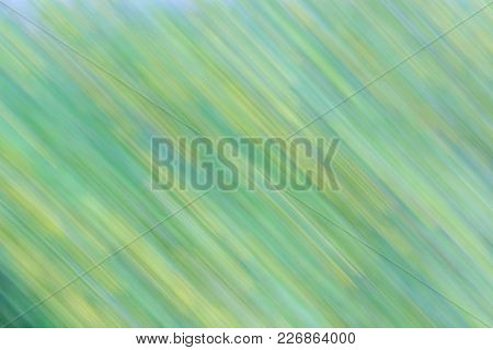 Abstract Green And Yellow Natural Background With Movement Effect. Diagonal Lines And Strips.  Photo