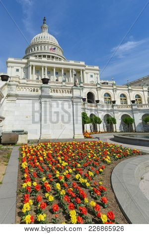 Capitol Building in spring time - Washington DC, United States
