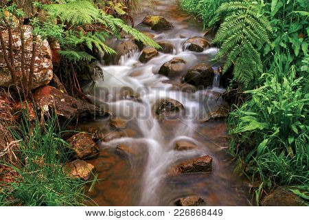 Slow Shutter Photo Of A Stream At Araluen Botanical Gardens In The Perth Hills. Perth, Western Austr