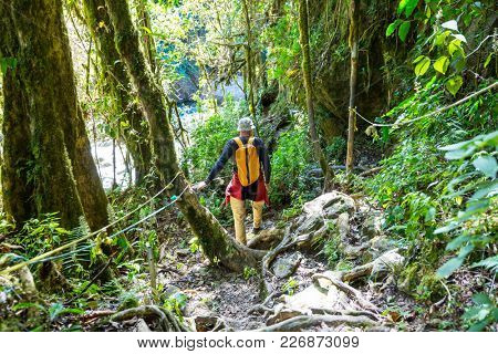 Hiking in green tropical jungle, Costa Rica, Central America