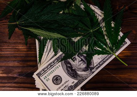 Leaves Of The Cannabis Plant And One Hundred Dollar Bills On Rustic Wooden Table. Top View