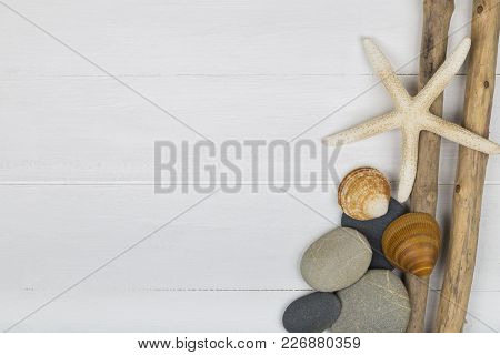 Driftwood Pebbles And Shells White Seaside Background