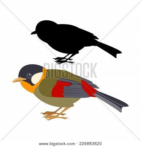 Gouldian Finch  Vector Illustration Flat Style  Black  Silhouette