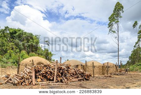 Charcoal Kilns At The Farm With A Pile Of Eucalyptus Wood On The Side.