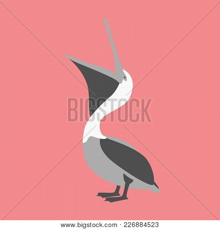 Pelican  Vector Illustration Flat Style  Profile Side