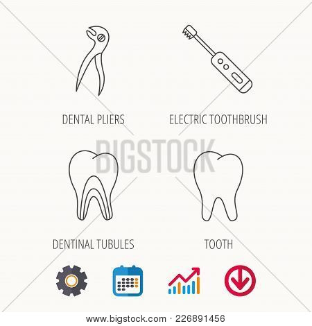 Tooth, Electric Toothbrush And Pliers Icons. Dentinal Tubules Linear Sign. Calendar, Graph Chart And