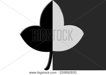A Leaf With Half Black And Half White Color.