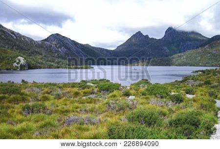 Cradle Mountain Dominates The Landscape Above Dove Lake In The Cradle Mountain - Lake St. Clair Nati