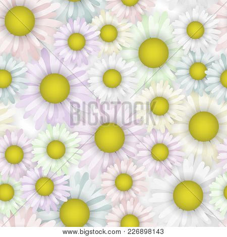 Seamless Pattern Background With Beautiful Daisy. Blooming Flower Vector Illustration. Cloth Pastel