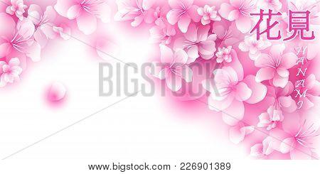 Gentle Background With Cherry Blossoms. Hanami - Japanese Traditional Festival Flowering Sakura.. Ja