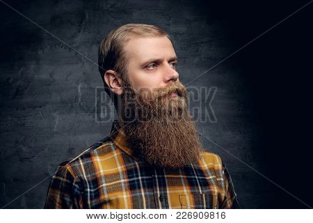 Studio Portrait Of A Bearded Hipster Man Dressed In A Plaid Shirt Isolated On Illuminated Grey Vigne