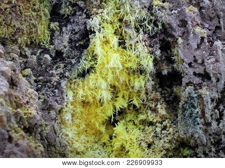Yellow Sulfur Crystals At The Opening Of A Geothermal Vent At The Wai-o-tapu Thermal Wonderland In N