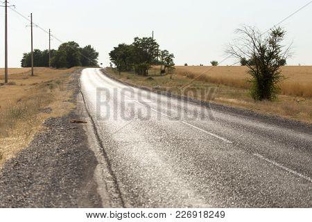 Asphalt Road . In The Park In Nature