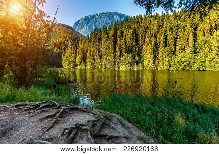 Magnificent Mountain Lake Lakul Rosu In The Mountains. View On The Shore. Unusual Sunny Landscape. L
