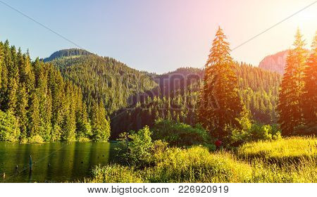 Wonderful Summer Morning. Majestic Mountain Lake In Mountain. Under Sunlight. Unusual Sunny Landscap