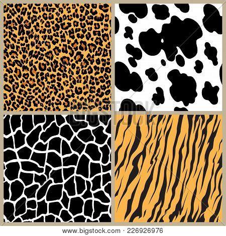 Set Safari Jungle Animal Fur Stripe Animals Bengal Tiger Giraffe Zebra Texture Pattern Seamless Repe
