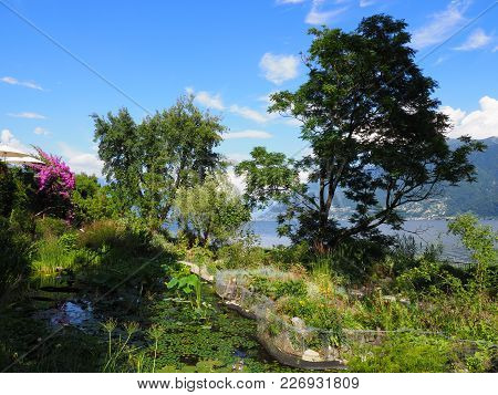Path And Green Exotic Forest At Brissago Island In Switzerland, Scenic Alpine View On Swiss Lake Mag