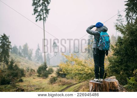Young Woman Standing On Stump In Forest And Looking Into Distance. Back View.