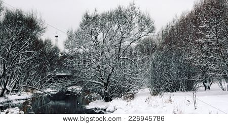 Snow Covered Trees On The Riverbank. Winter In Russia. The Bell Tower Of The Christian Church Behind