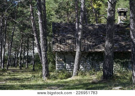 An Old Cabin Surrounded With Trees In The Forest, Spain