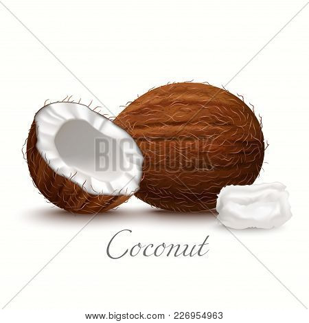 Whole Coconut Half And Oil. Realistic Elements For Labels Of Food Cosmetic Skin Care Product Design.
