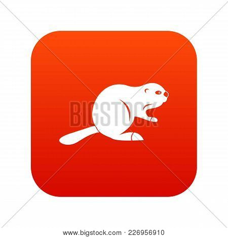 Canadian Beaver Icon Digital Red For Any Design Isolated On White Vector Illustration