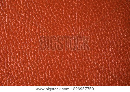Texture Of A Surface From A Natural Skin Of Red Color. Close-up View.