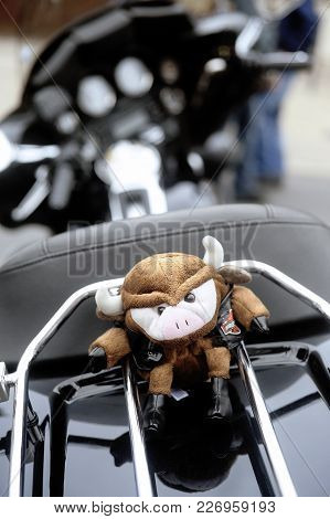 Beaucaire, France - April 30, 2016: A Stuffed Pig Hanging On The Back Of A Motorcycle To A Gathering