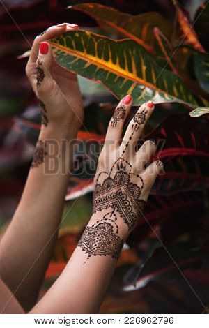 Female Hands With Henna Tattoo Touching Beautiful Exotic Leaves. Indian Mehendi Ornaments Painted On