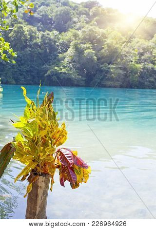 Blue Lagoon On Jamaica Landscape In Sunny Day