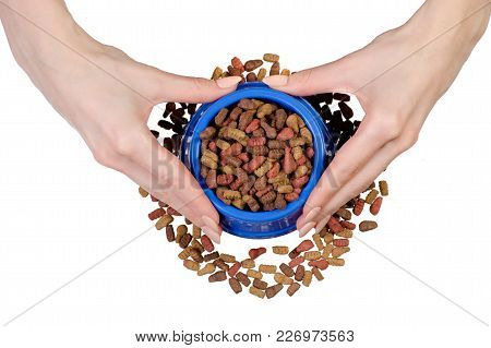 Dry Food In A Bowl For Dogs And Cats In Hands On A White Background Isolation, Top View