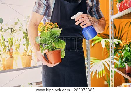 A Man With Tattooed Arms Watering Flowers In A Pot.
