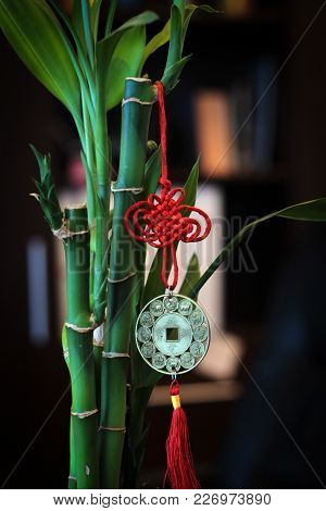 A Green Bamboo With A Red Chinese Charm-seal At The Office