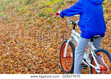 Young Man Riding A Mountain Bike Through The Woods