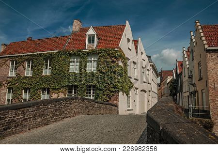 Bruges, Northwestern Belgium - July 05, 2017. Bridge And Brick Buildings With Creeper In Sunny Day A