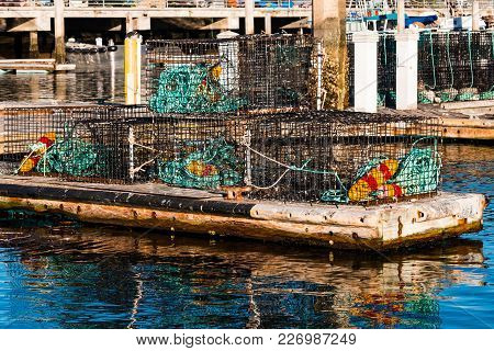 A Dock With Lobster Traps In San Diego Bay In California.