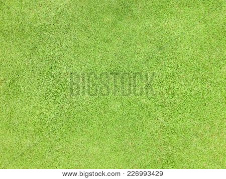 Natural Grass Texture Pattern Background Golf Course Turf From Top View With Authentic Grassy Lawn F